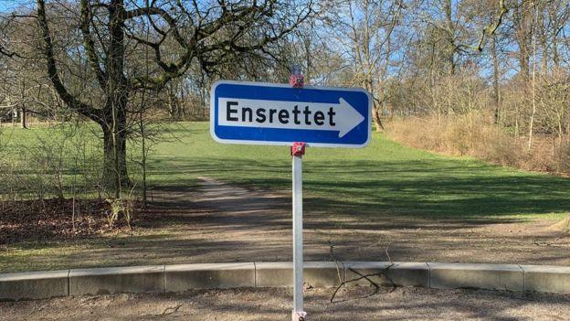 Дорожный знак в парке