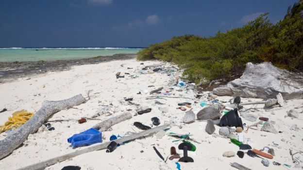 Our plastic rubbish has floated to islands that are thousands of miles from the nearest human population (c) SPL