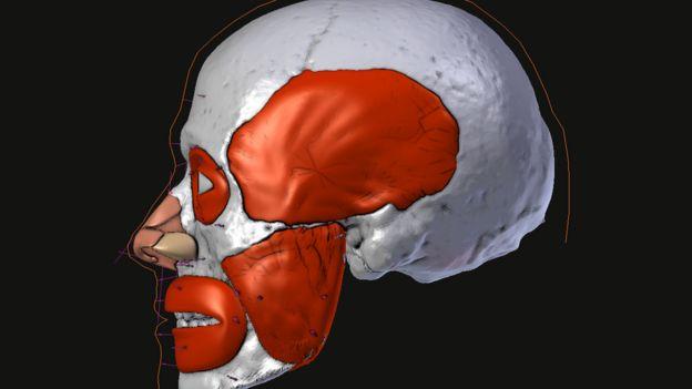 Imagen de la reconstrucción facial de San Valentín