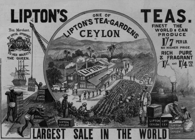 Lipton's tea advert