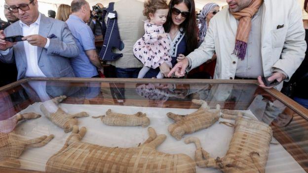 Momias de animales en exhibición en Egipto.