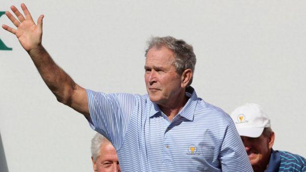 Bush.