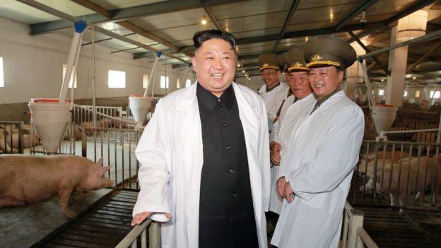 Kim Jong-un đến thăm trang trại lợn Thaechon của Lực lượng Không quân và Phòng không (ảnh không rõ ngày chụp do Thông tấn xã Bắc Hàn đưa ra hôm 23/4)