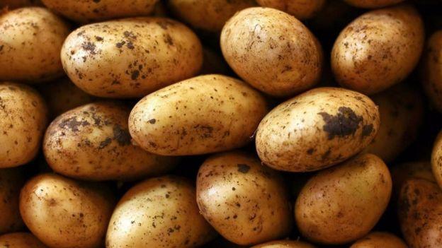Khoai tây là loại thực phẩm có chứa thành phần protein cao đến mức ngạc nhiên