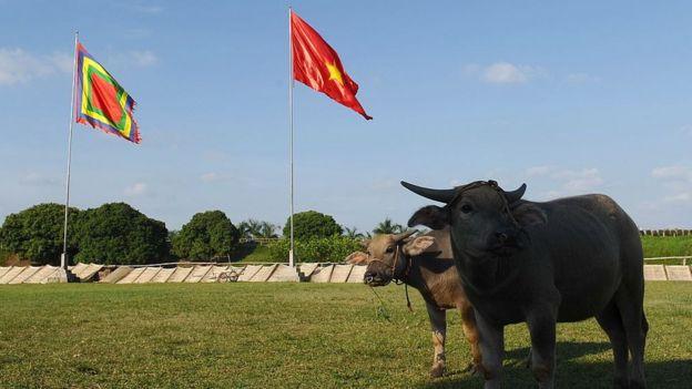 Việt Nam, Đảng Cộng sản