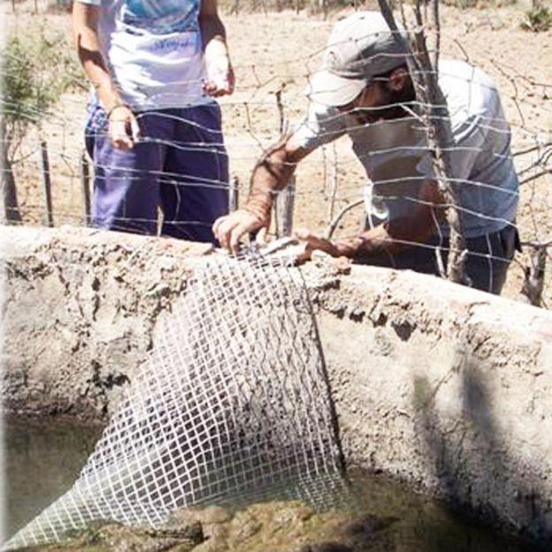Rampa de rescate en un reservorio