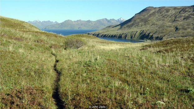 當你穿越起伏的高山草甸和壯闊的山峰,你能感受到阿留申群島真實的靈魂。