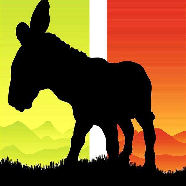 silueta de burro