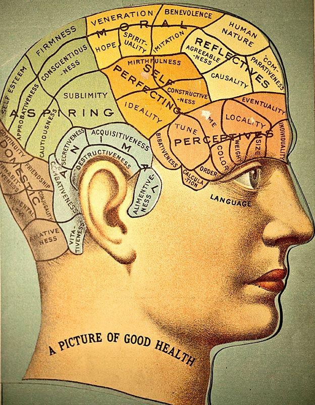 """""""La imagen de la buena salud"""", con regiones en diferentes colores indicando los órganos atribuidos a los instintos animales, domésticos, a las aspiraciones, el """"auto perfeccionamiento"""", a las facultades morales, perceptivas y reflectivas."""