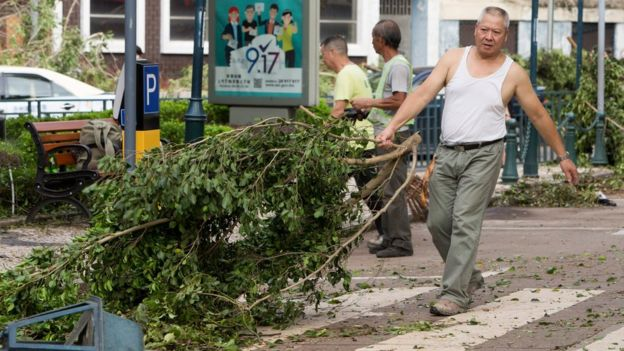澳門街頭一名老人自發清理被颱風吹倒的樹幹(25/8/2017)