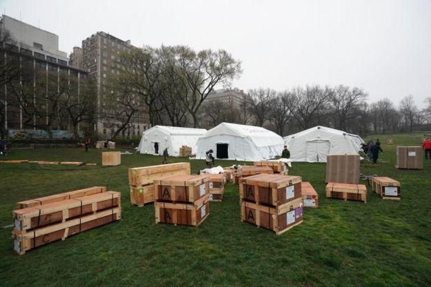 紐約市已有超過33,000例病,該市在中央公園建起了野戰醫院。