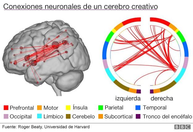 Conexiones neuronales de un cerebro creativo