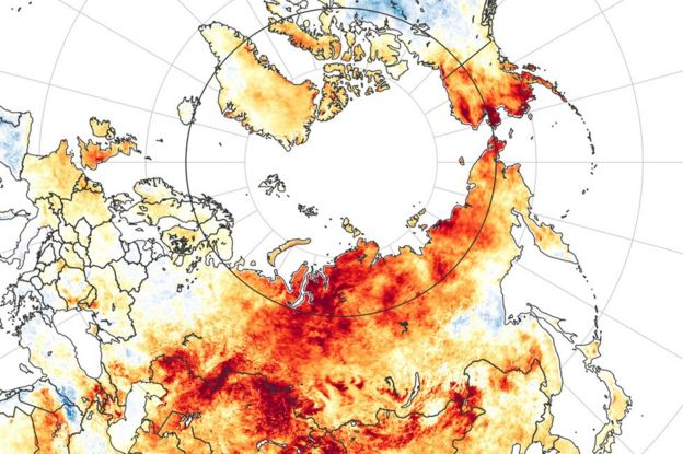 Arctic land surface temperature anomalies from 19 March to 20 June 2020