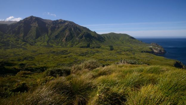 Gough Island south end
