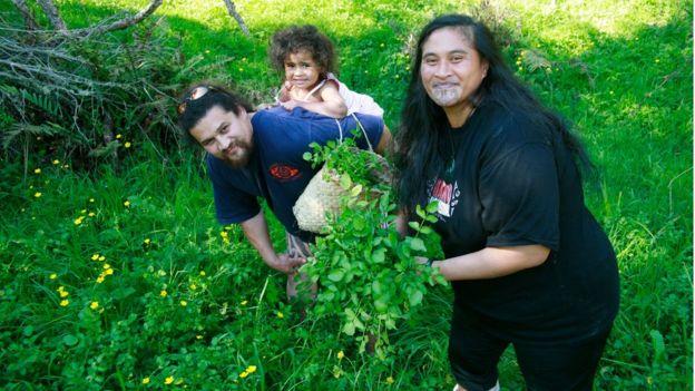 Imagem mostra homem, mulher e criança com plantas de radula na Nova Zelândia