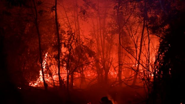 A fire burn in a land next to residence in Pekanbaru, Riau province, on September 13, 2019