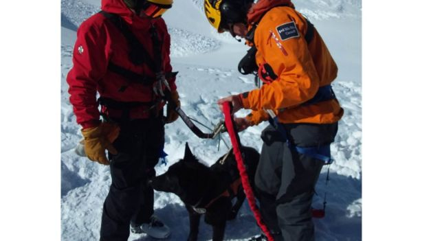 The bodies were located with the help of a specially-trained avalanche dog