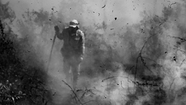 Brigadista no Pantanal