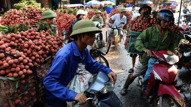 Nông dân ở Bắc Giang chờ đến lượt bán vải thiểu ở cửa khẩu