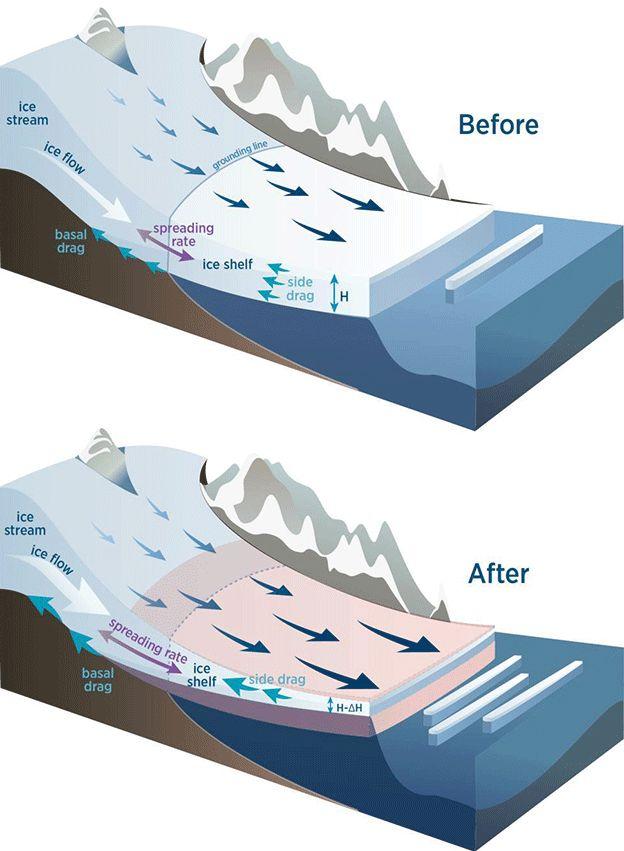Cartoon explanation of shelf thinning