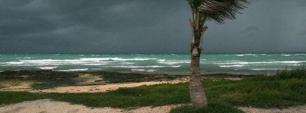Windswept beach in the Caribbean