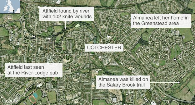 James Attfield and Nahid Almanea murders: The schoolboy