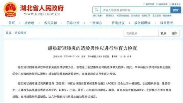 湖北省官网刊登的文章