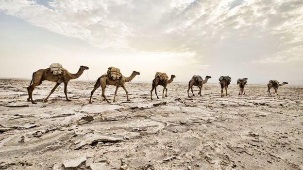 مانسا موسی مسلمانی معتقد بود و با سفر به مکه و شرکت در حج، یکی از اصول دین را به اجرا در میآورد.