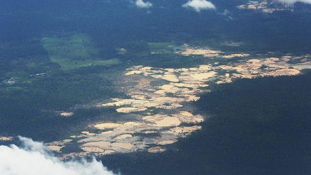 Minas de oro en medio del bosque peruano.