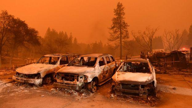 Лесные пожары в Калифорнии подрывают экономику самого богатого штата США