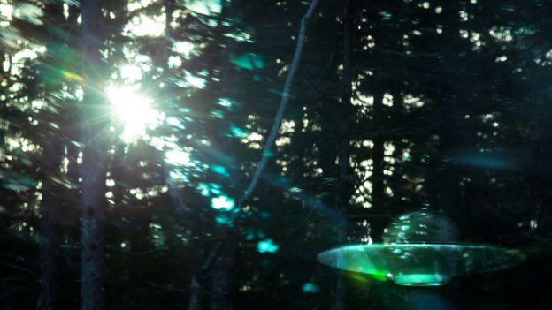 ovni en bosque