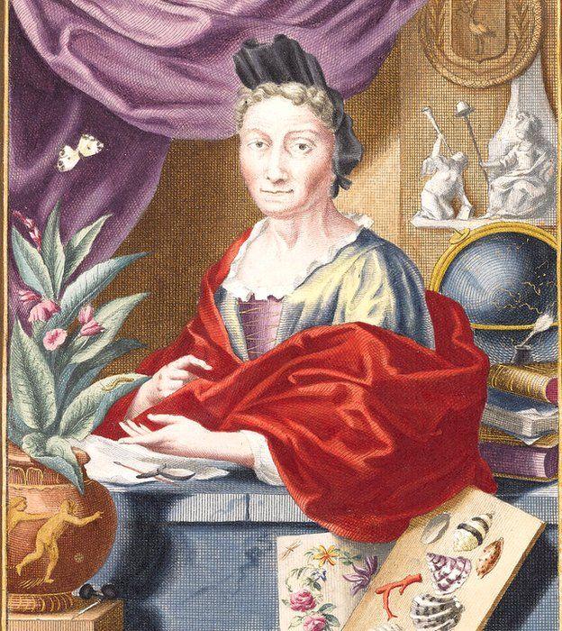 Maria Merian
