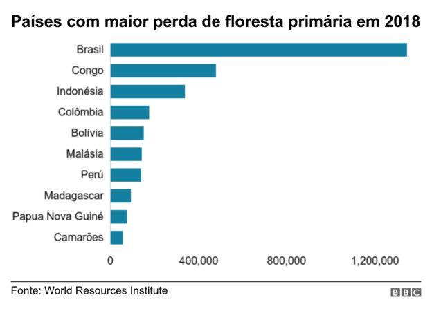 gráfico de desmatamento por país