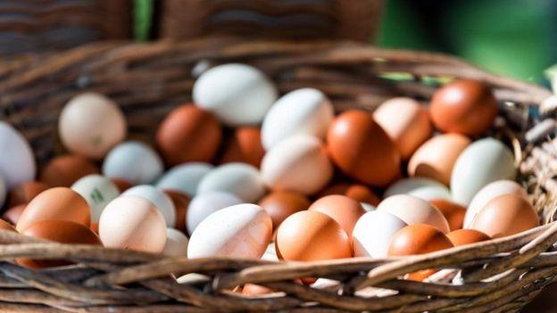 Cesta de ovos brancos e amarelos