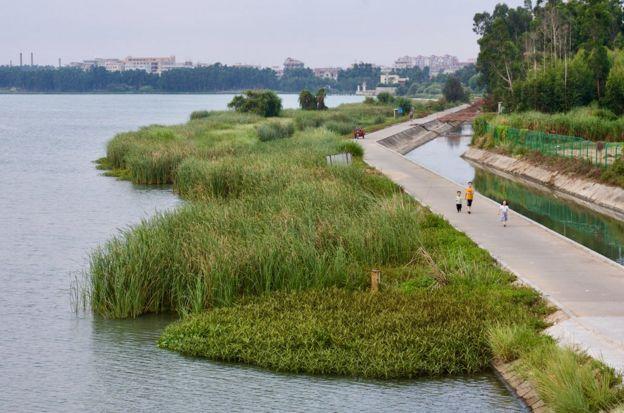 這是福建向金門供水工程取水地——福建晉江龍湖。