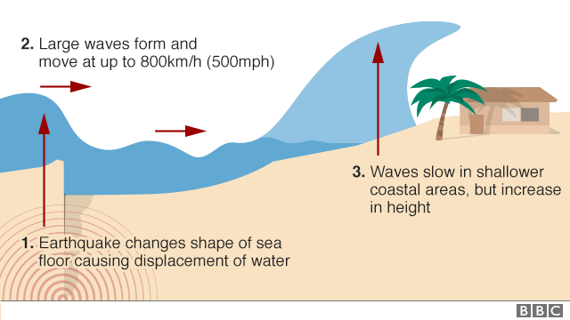 Graphic explaining how earthquakes change shape of sea floor and this displaces water leading to tsunami