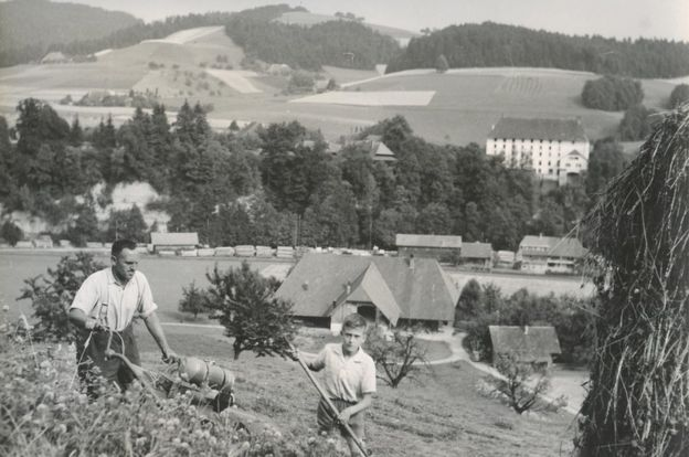 Archive photo Swiss arable farming