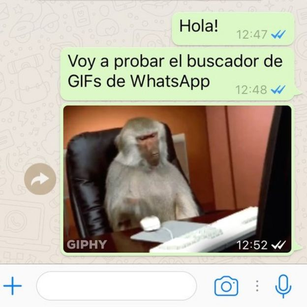 descargar videos memes para whatsapp
