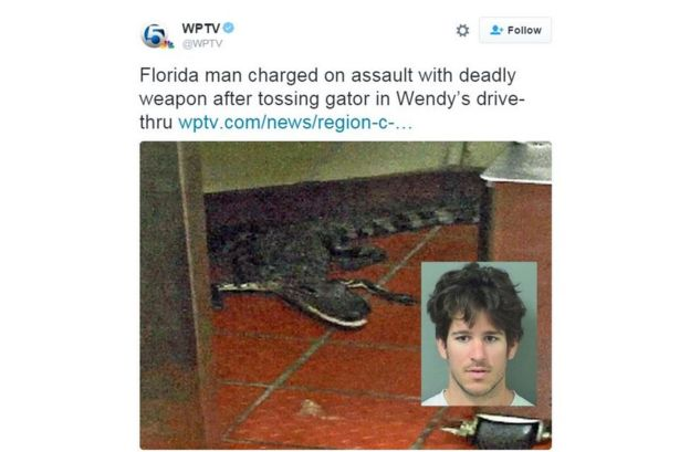 Florida man charged with 'throwing alligator' into fast-food
