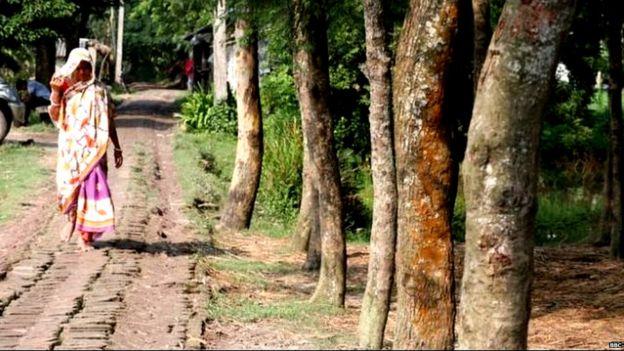 गांव की सड़कें