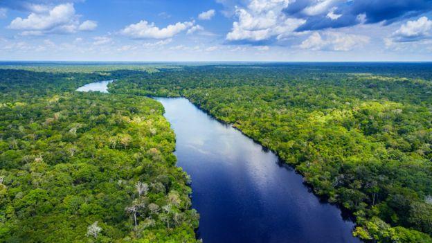 Rio 'cortando' a floresta amazônica