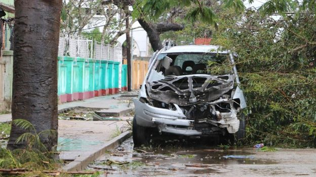 Car hit by fallen tree in Beira