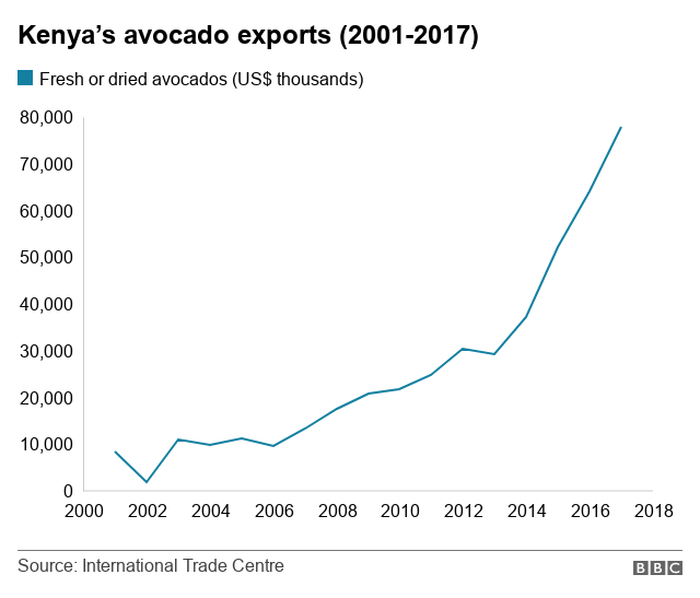 Kenyans cash in on avocado craze - BBC News