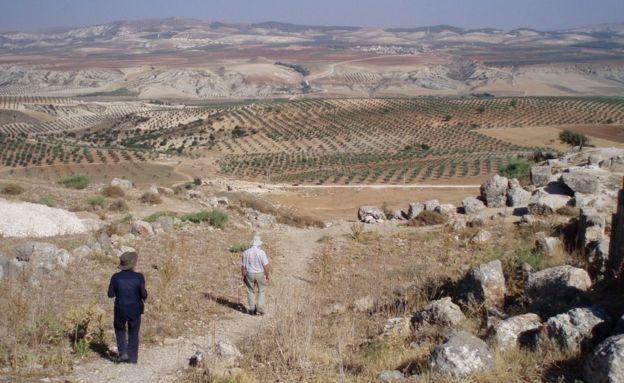 Afrin zeytin tarlalarıyla ünlü.