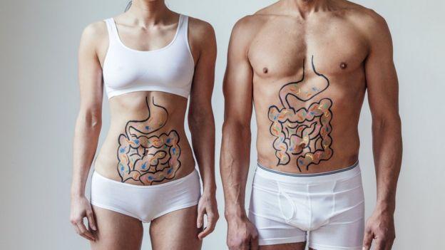 Mujer y hombre en ropa interior con el sistema digestivo dibujado en el cuerpo