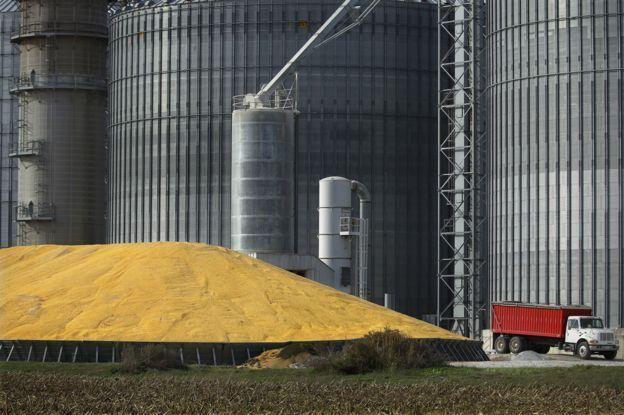 Elevador de grãos em silo