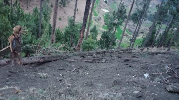 Imágenes de Pakistán muestran un bosque dañado por carga exploriva