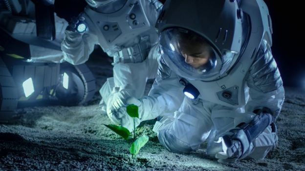 Astronauts with plant