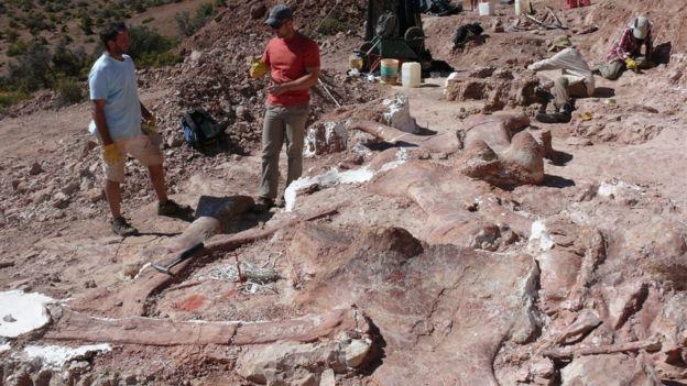 Una excavación paleontológica en la Patagonia