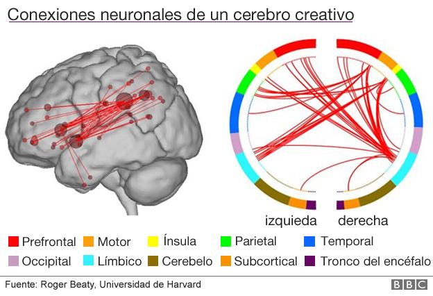 Ilustración de las conexiones neuronales
